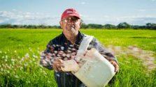 Emekliliği bekleyen kırmızı şapkalı yaşlı adam