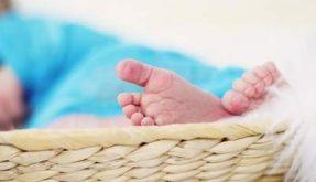 doğum sonrası haklar