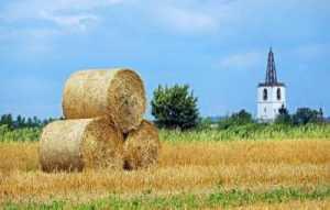 tarım işçi alacağı dava