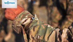 asker koluna konmuş bir kelebek